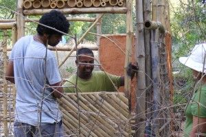 Bamboo Construction and garden work
