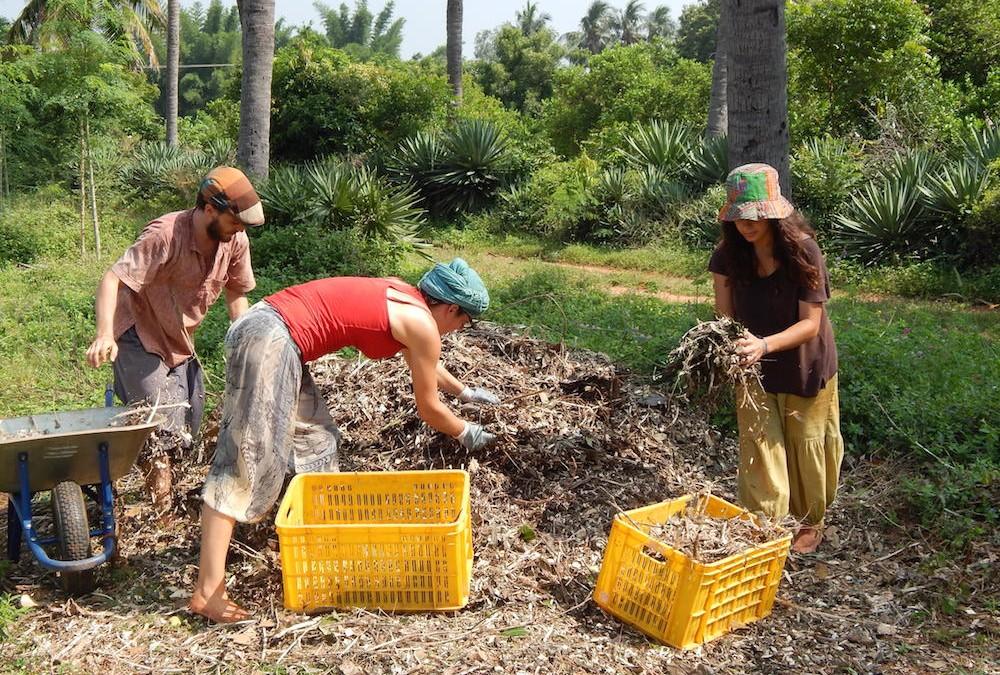 Organic Farmer Assistant