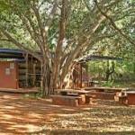 Building a School Garden using Permaculture Principles
